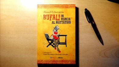 """Photo of """"Bufali in marcia al mattatoio"""" di Ahmel Echevarría, edizioni Efesto: libri in pillole"""
